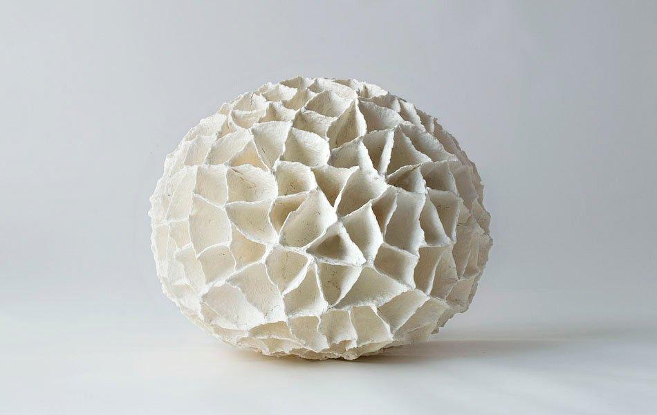 06_coral I